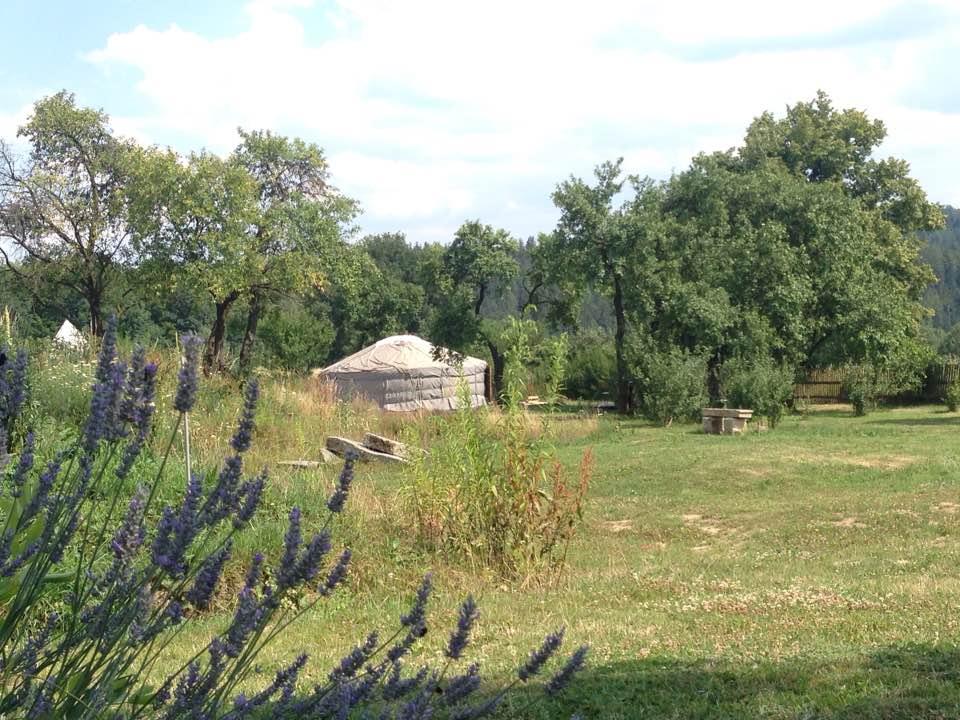 view_garden_yurt