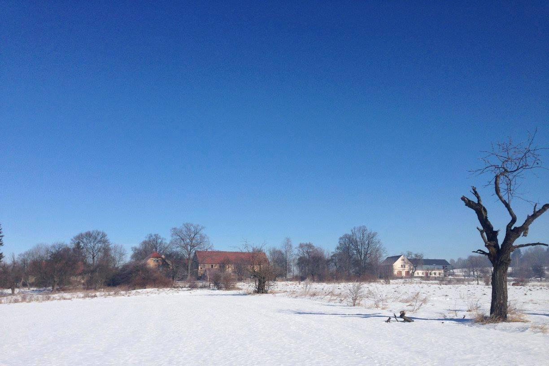 tarastarczyn_winter