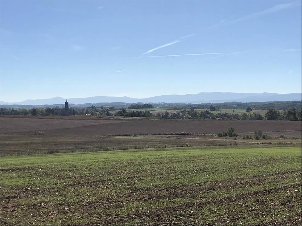 view_field
